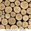 Stock Photo Fire Wood Stock For Winter 97944980